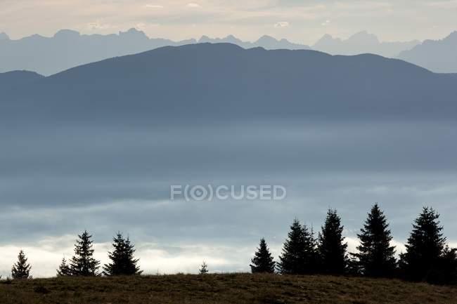 Manhã sobre a floresta de montanha — Fotografia de Stock
