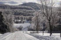 Дорога в зимовий період після бурі льоду — стокове фото