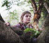 Молодая девушка сидит на дереве; Золотой берег Квинсленд Австралии — стоковое фото