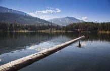Людина практикам йоги на журнал бум в втрачені озера; Вістлері, Британська Колумбія, Канада — стокове фото