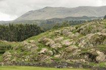 Die Ruinen von Sacsayhuaman — Stockfoto