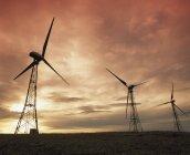 Turbine eoliche sul campo — Foto stock