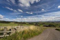 Дорога с холмистым ландшафтом — стоковое фото