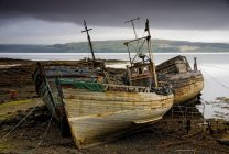 Three abandoned boats — Stock Photo