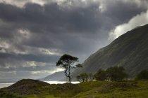 Nubi scure sopra il paesaggio lungo costa — Foto stock