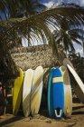Surfbretter, gestützt durch eine Hütte — Stockfoto