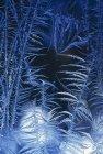 Primeras heladas patrón de invierno en la ventana - foto de stock