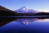 Mount Hood National Forest — Stock Photo