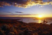 Appassionato di mountain bike al tramonto — Foto stock