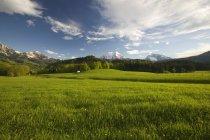 Alpine Meadow at Watzmann Mountain — Stock Photo