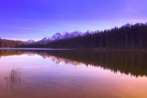 Reflection In Water of mountain peaks — Stock Photo