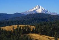 Ansicht des Mount Hood — Stockfoto