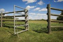 Открыть ворота на ферме — стоковое фото