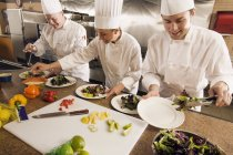 Chefs Assembling Food — Stock Photo