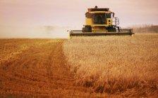 Erntemaschine bei der Arbeit auf dem Feld — Stockfoto