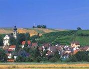 Aldea alemana y viñedos - foto de stock