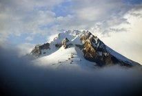 Маунт-Худ со снегом — стоковое фото