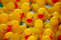Vista de los patos de goma amarillos, marco completo - foto de stock
