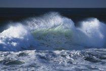 Wellen krachen über dunklen Hintergrund — Stockfoto