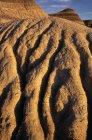 Arido deserto durante il giorno — Foto stock