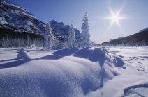 Schneebedeckte Landschaft — Stockfoto