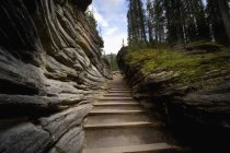 Escalera entre rocas - foto de stock
