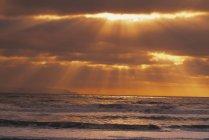 Промені сонця над тихим океаном — стокове фото