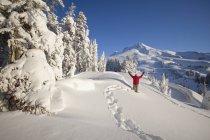 Raquette à neige hiver — Photo de stock