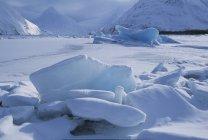 Icebergs en el lago congelado - foto de stock