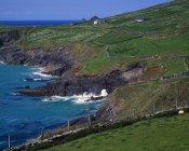 Ирландский пейзаж каменных стен — стоковое фото