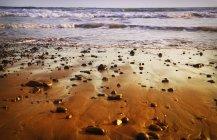 Spiaggia rocciosa con pietre — Foto stock