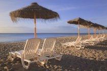 Ombrelloni e sedie a sdraio — Foto stock