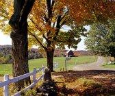 Rural Autumn Landscape — Stock Photo