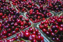 Cartons Of Cherries outdoors — Stock Photo