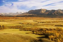 Les contreforts et les montagnes de l'Alberta — Photo de stock