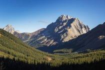 Montagne avec des sommets et la vallée boisée — Photo de stock