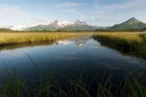 Paesaggio dell'Alaska con le montagne — Foto stock