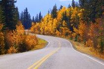 Звивистій дорозі восени — стокове фото