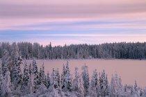 Frozen Lake In Winter — Stock Photo