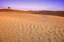 Великий песчаные холмы — стоковое фото