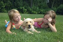 Children Playing With Puppy — Stock Photo
