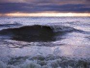 Grande vague sur la côte — Photo de stock