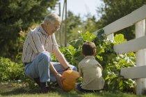 Діда і онука в саду — стокове фото