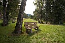 Banco de madeira do parque — Fotografia de Stock