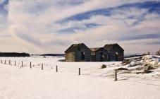 Strutture agricole In inverno — Foto stock
