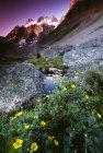 Горные вершины и ручей — стоковое фото