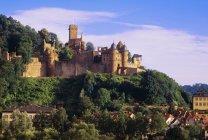 Замок Мильтенберг — стоковое фото