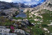 Rocky terrain with stones — Stock Photo