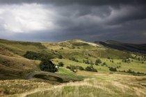 L'erba ha coperto colline — Foto stock