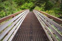 Пешеходный мост в парке Силвер Фоллс — стоковое фото
